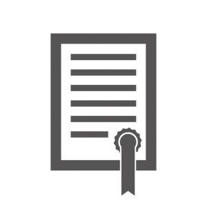 RISCO Zonenlizenz für ProSYS Plus