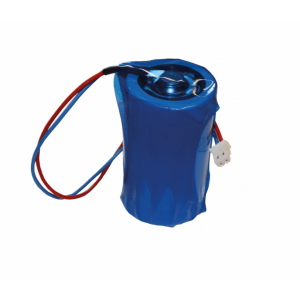 iConnect Ersatz-Batterie für 2-Wege-Funksirene FLS2W031